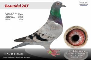 nl-18-5181243-x